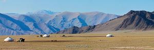 Монгольские будни