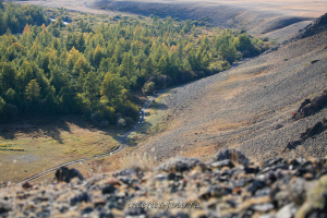 Дорога в долине Каргы