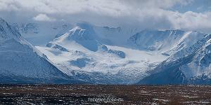Вид на Алахинский ледник - Укок