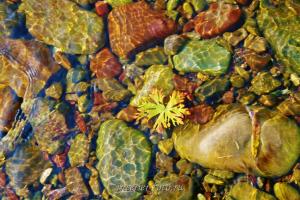 Осень на Улуг-Хондергее - Тува