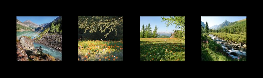 Классический полиптих из 4 фотографий горизонтального расположения