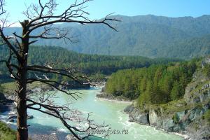 Катунь в Чемале - Алтай