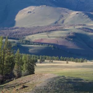 Весна поднимается в горы - Курай