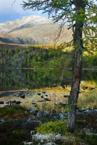 На Стоктышских озерах - Саяны