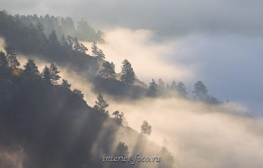 Туманное утро в Чемале