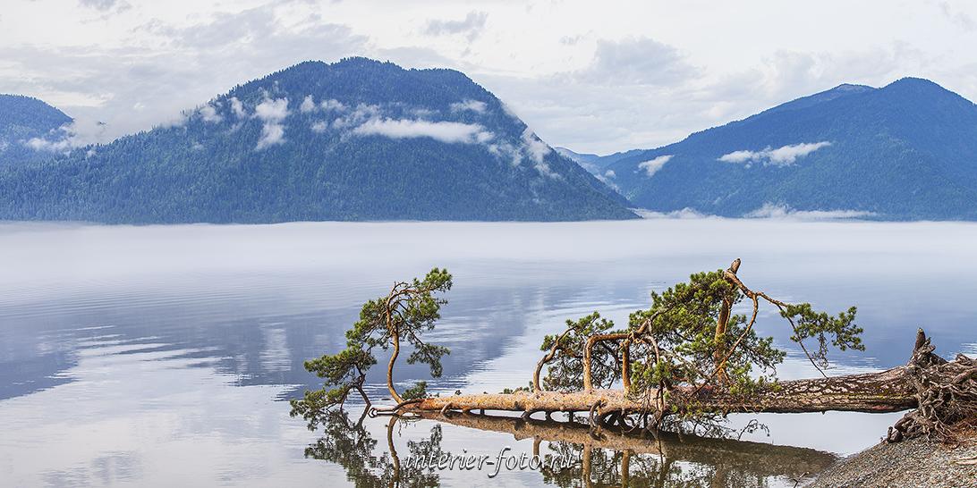 Телецкое озеро в Яйлю