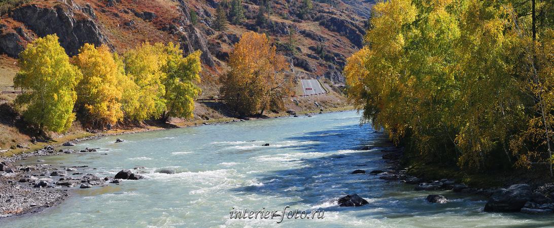 Алтайская осень Чуя