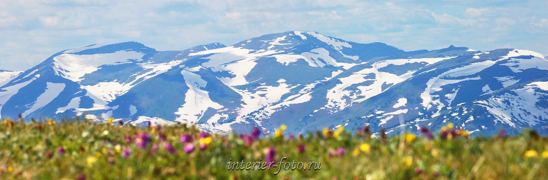 Весна в Алтайских горах