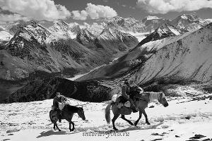 Черно-белые вид Белуха