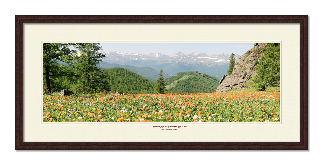 Панорама Цветущие горы