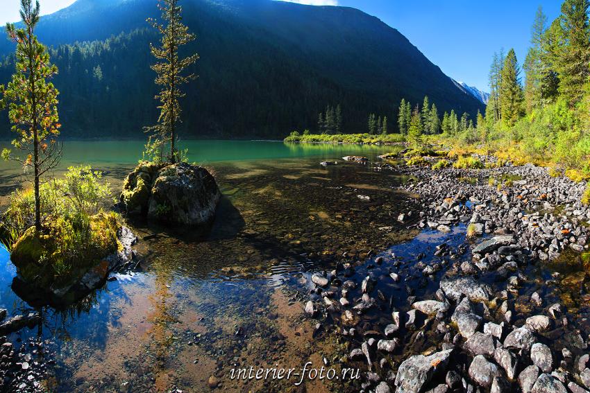 Дикое озеро на Алтае