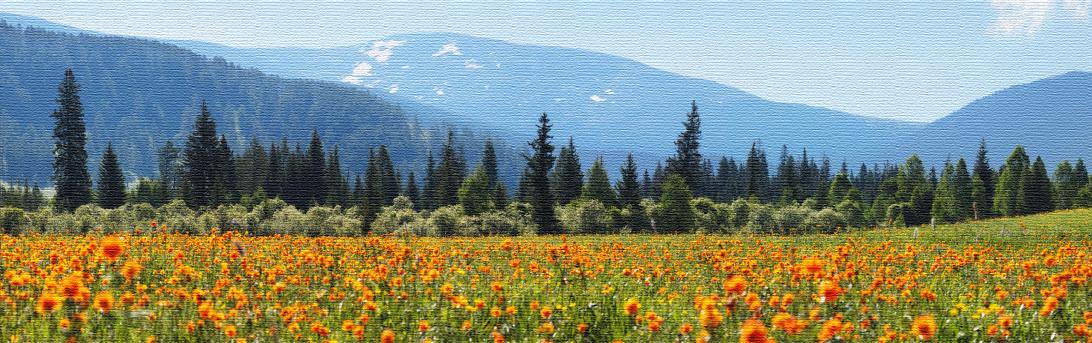 Фотографии на холсте Весна
