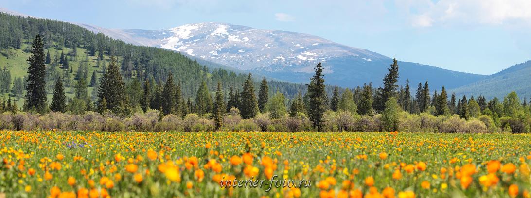 Горы весной фото