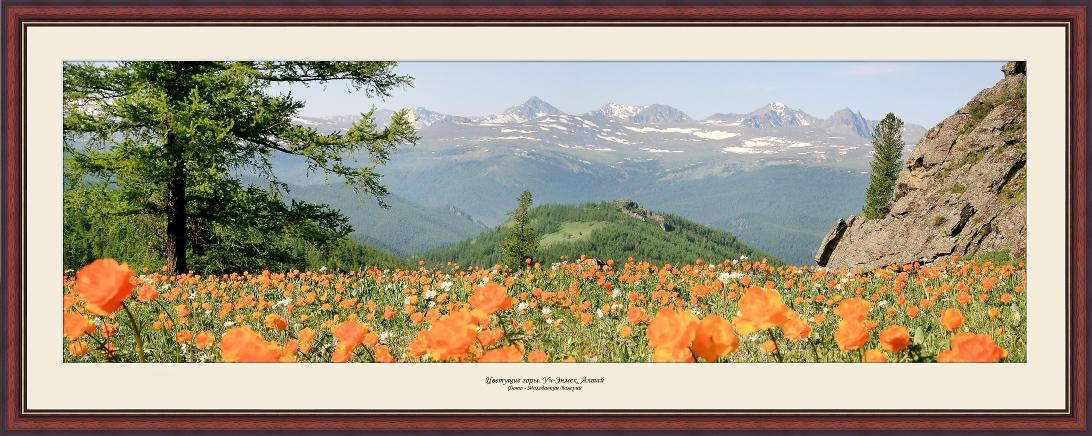 Горы весной Фотокартина