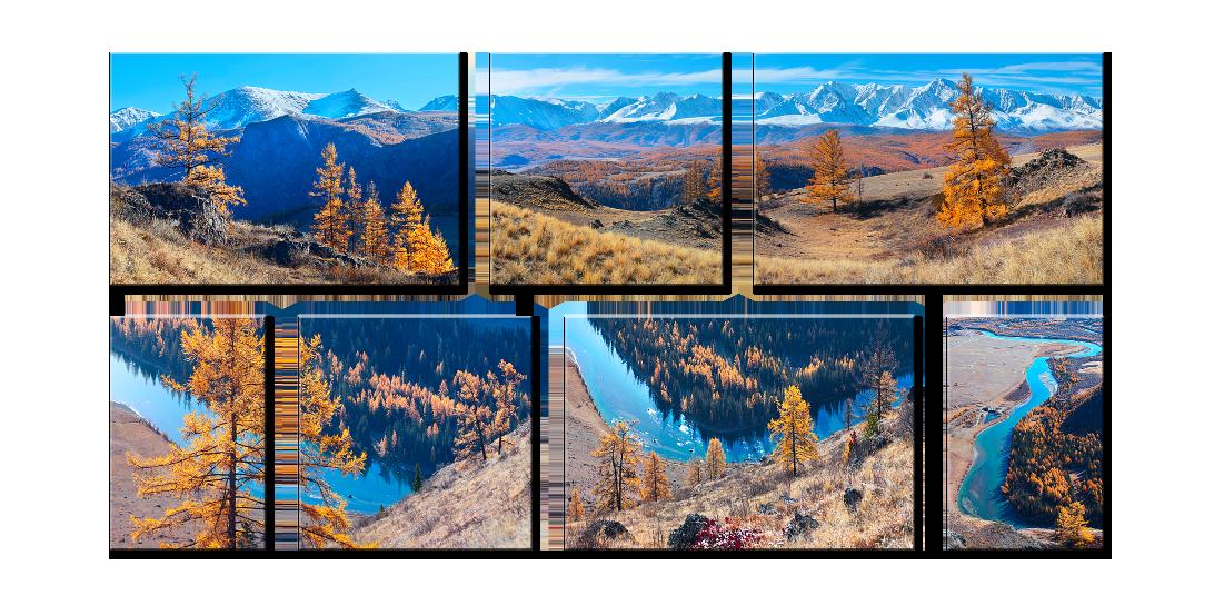 Яркие фото модульная композиция