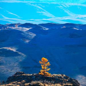 Яркие фото Алтая