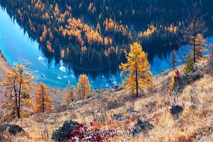 Яркие фото Алтая Чуя