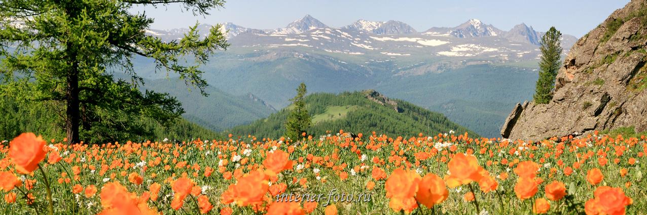 Красивые места в горах