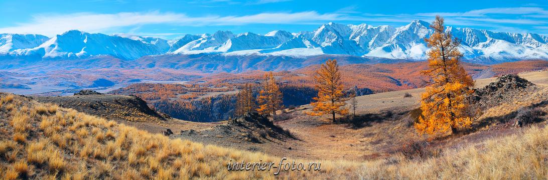Северо-Чуйский хребет осенью Курай