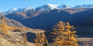 Курайский хребет с подъема на Белькенек Алтай