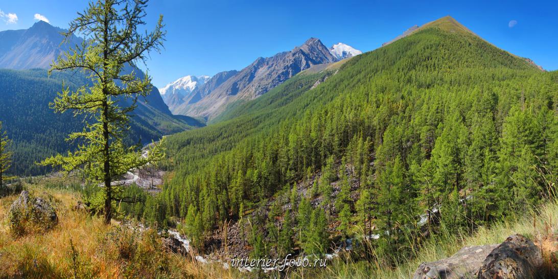 Летние горные пейзажи