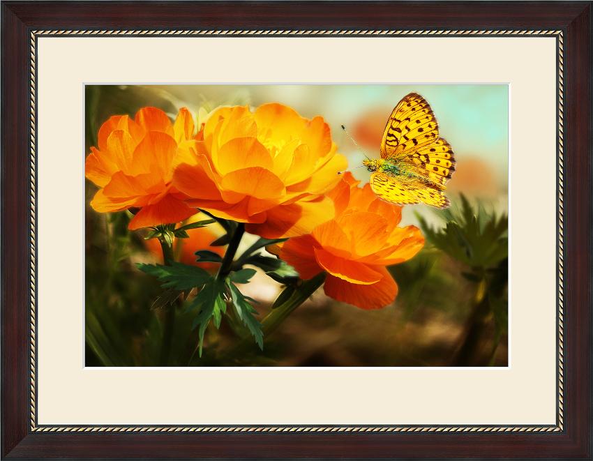 Недорогие картины Цветы