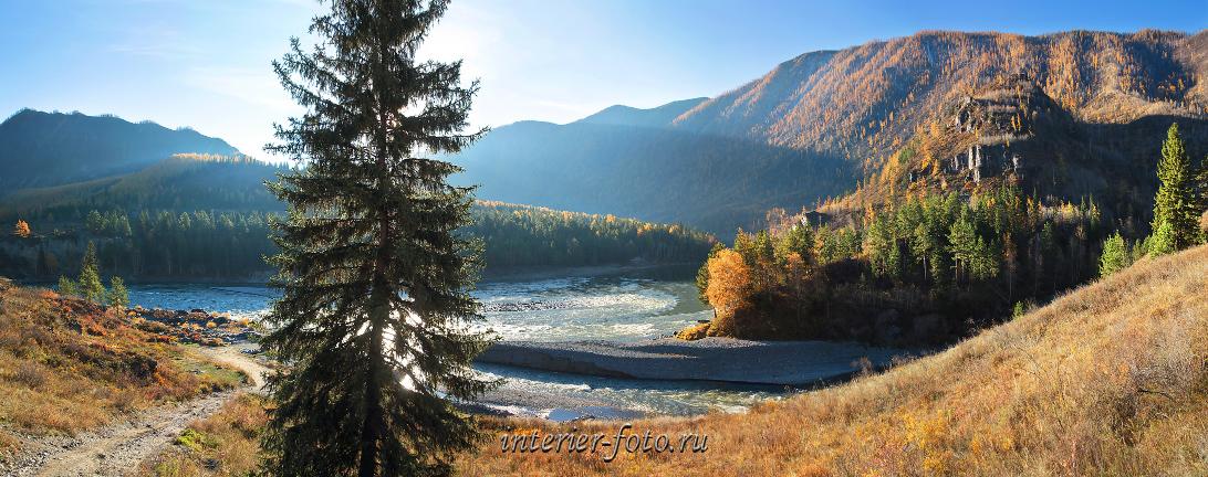 Осенние виды Река