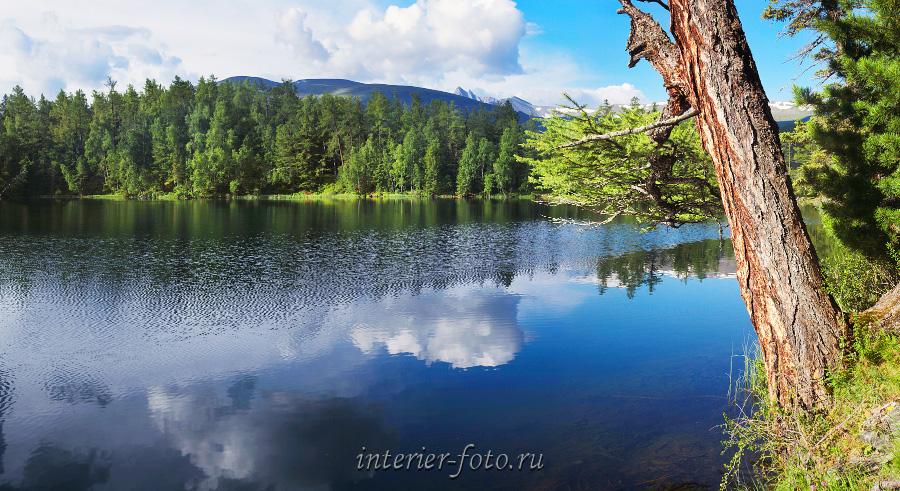 Отражение в озере Алтай