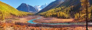 Красивая река Алтай