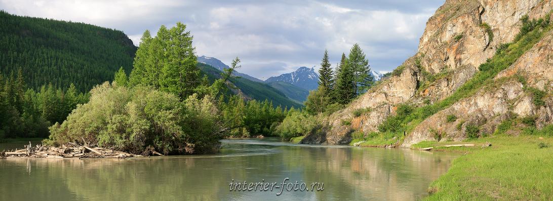 Прекрасная природа Река