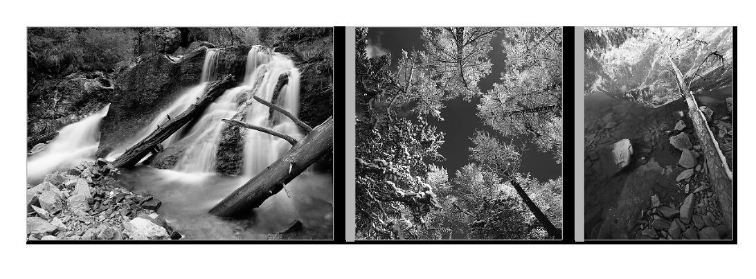 Триптих из фотографий разных форматов