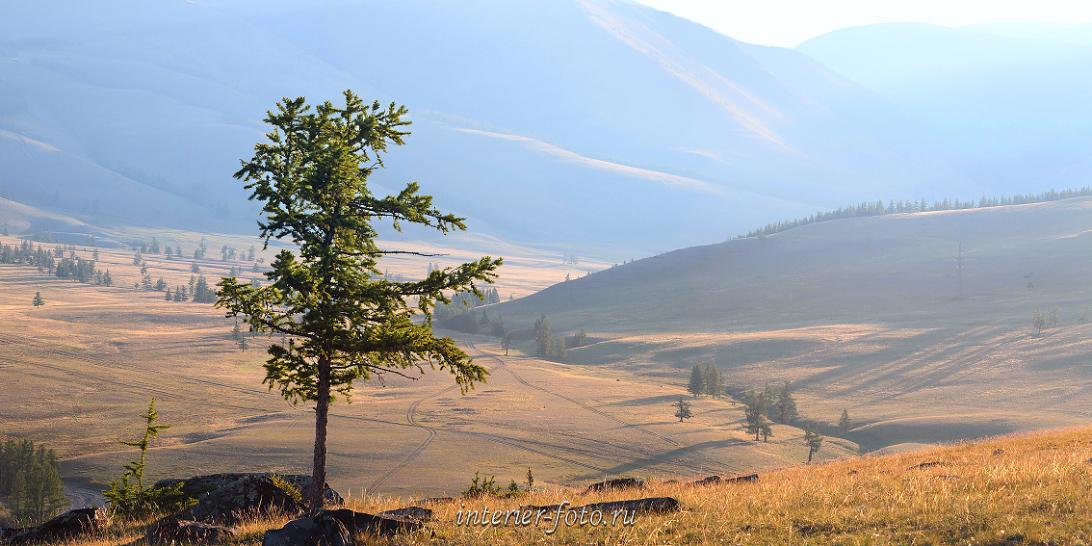 Туман и дымка Алтай