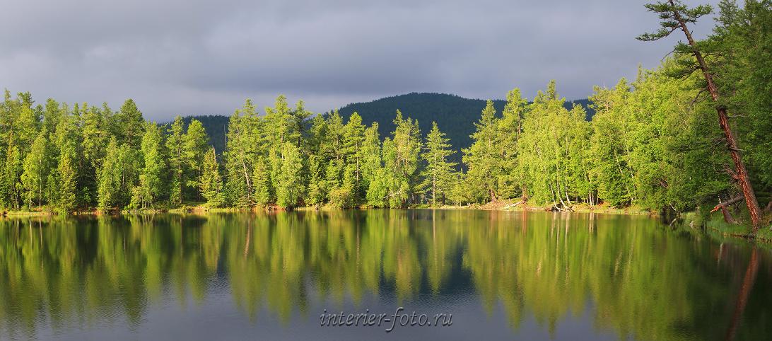 Живописное лесное озеро